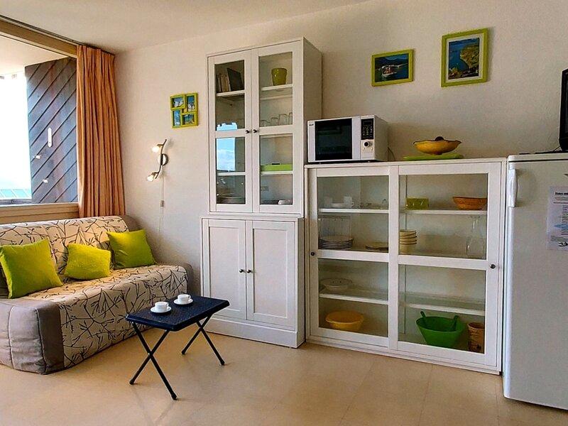 Appartement 6 personnes pied des pistes 126R Le Relais Réallon, alquiler de vacaciones en Reallon