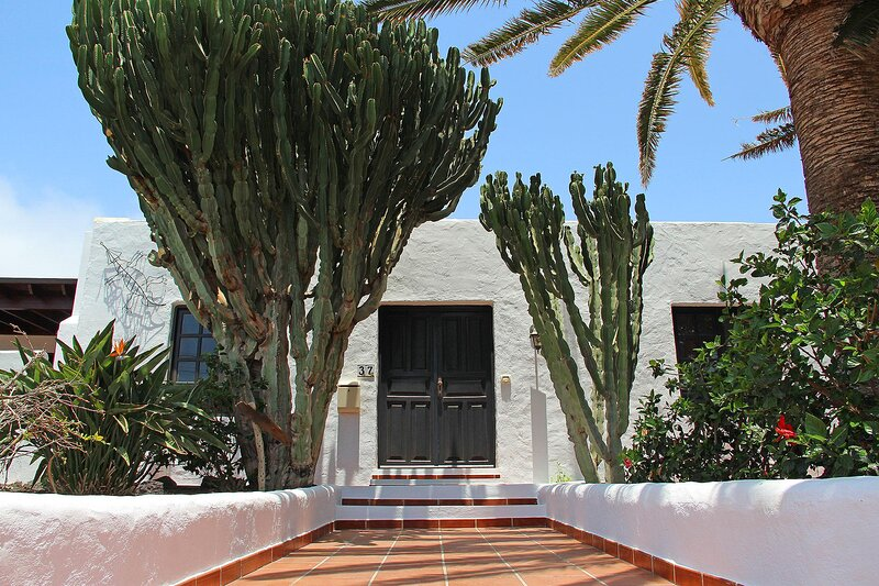 Beautiful Canarian finca with sea views., holiday rental in Macher
