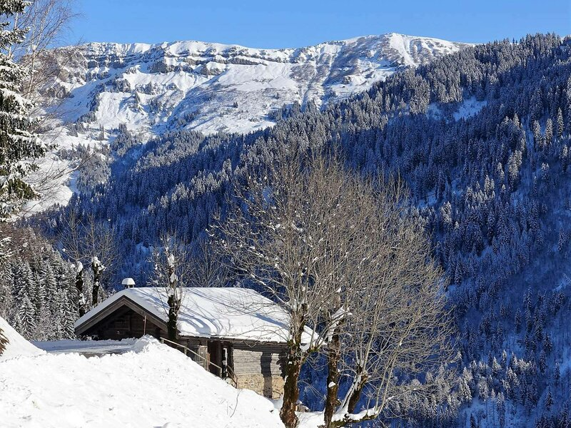 VUE *** POUR CE CHALET 6 PERS - CLASSÉ 2* - Plein SUD, holiday rental in Areches