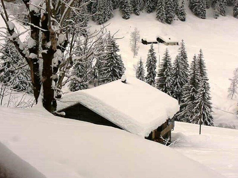 CHALET NATURE SUR PISTES L'HIVER et DANS LES ALPAGES L'ETE- 12 pers., holiday rental in Areches
