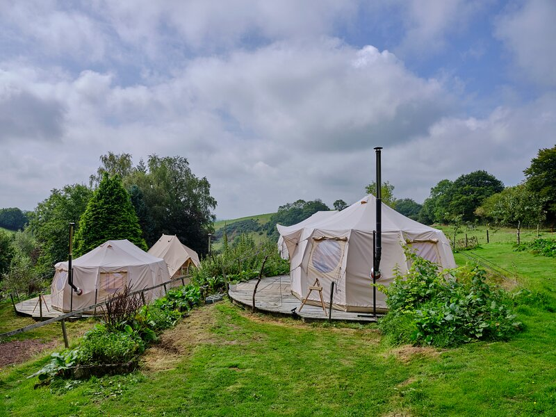 Clover Bell Tent, vacation rental in North Molton