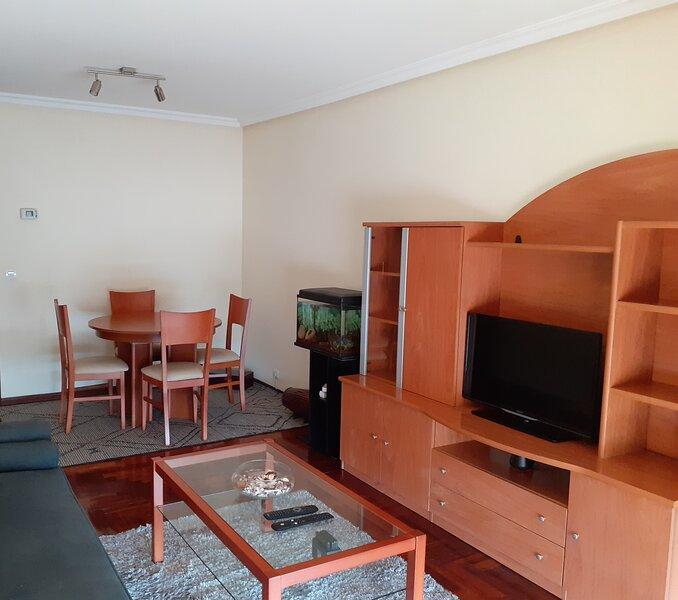 Piso Vilavella, holiday rental in Anceu