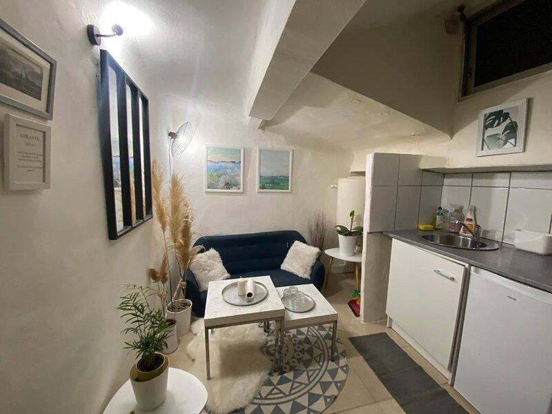 Marseille Appartement 2 pieces, aluguéis de temporada em Plan De Cuques