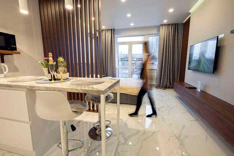 Elegant studio, central part of Kiev, vacation rental in Irpin