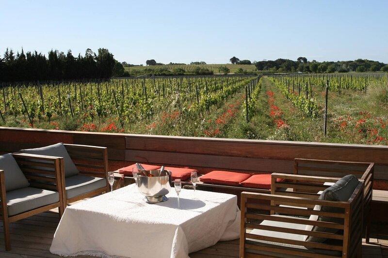 Stunning Villa with Vineyard View in Montpellier, holiday rental in Castelnau-le-Lez