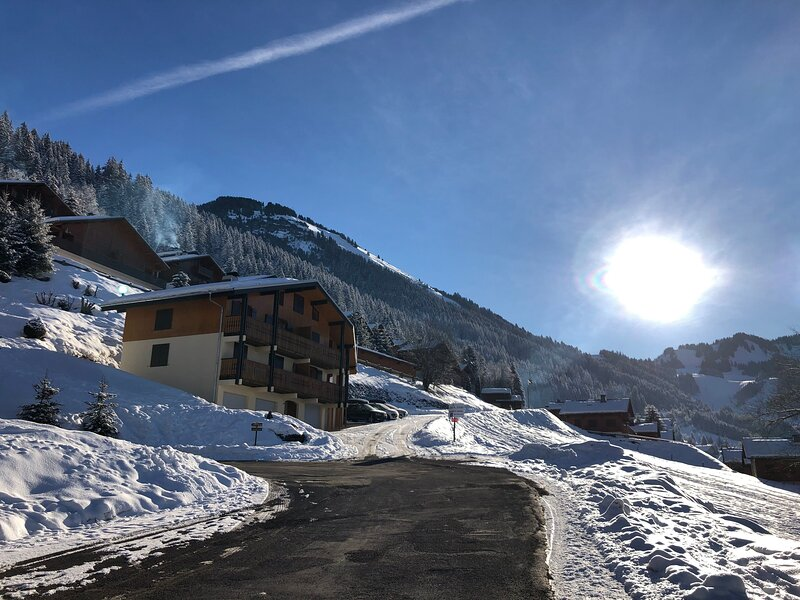 Apartment - 250 m from the slopes, location de vacances à Torgon