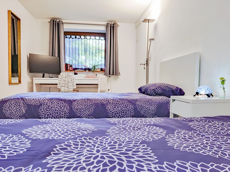 Entire guest suite in center very close to Basel city center and Euro Airport., holiday rental in Village-Neuf
