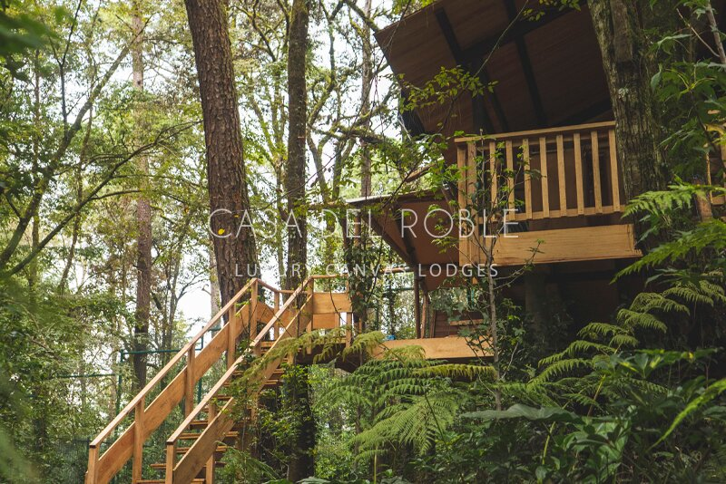 Bellota | Incredible lodge in the forest with private jacuzzi, alquiler vacacional en Valle de Bravo