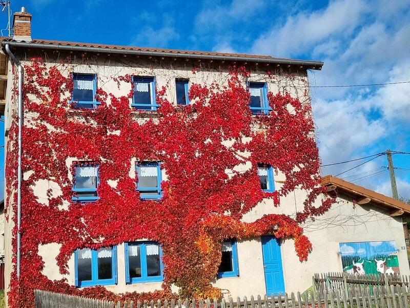 Gîte de Vermoyal, holiday rental in Monlet