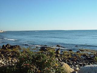 Nearby Rocky Coast