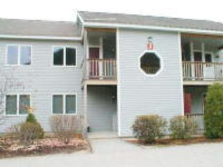 Eagle Ridge Resort Condo Rental, Bartlett