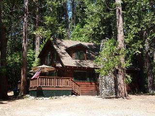 Gorgeous cabin- fireplace, near downtown & lake, deck, A/C &  firepit, Twain Harte