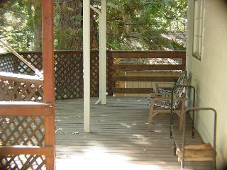 Great home- near downtown & lake, handicapped accessible, pets ok, internet