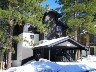 Austrian-Style Chalet Overlooking Forest ~ RA751, South Lake Tahoe