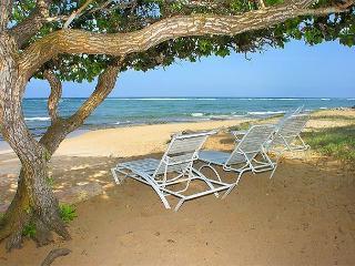 Waipouli #C-301: 2bdr/3bath Ocean front property, Kapaa