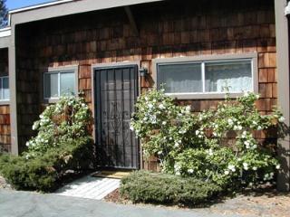439 Ala Wai, 161, South Lake Tahoe