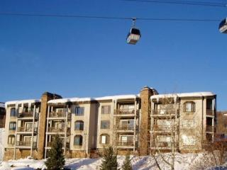 Norwegian Log:Ski-In/Out.Views. Discount Lift Tix*, Steamboat Springs