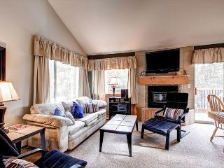 Timbernest B7 Condo Downtown Breckenridge Colorado Vacation Rental