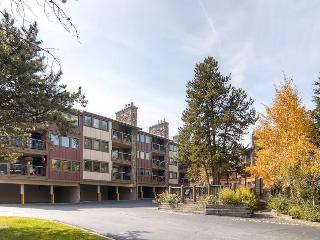 Park Place 104B - Walk to Lifts/Walk to Town, Breckenridge