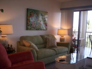 Fabalous unit in Waterfront Resort close to town, Marco Island
