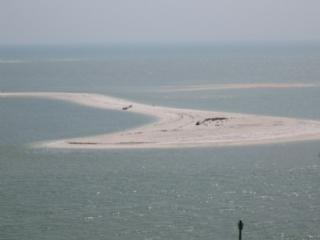 Shipp's Landing 3 821, Marco Island