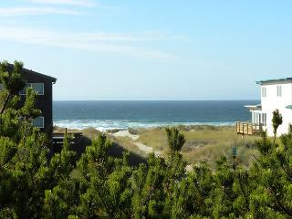 CHINOOKERY~GREAT LOCATION! VIEWS OF THE OCEAN!!   NOW WITH WIFI!!, Manzanita