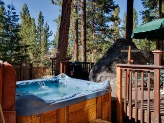 Organic Architectural Style Tahoe Home, located in a Lakefront Community (SK05), Zephyr Cove