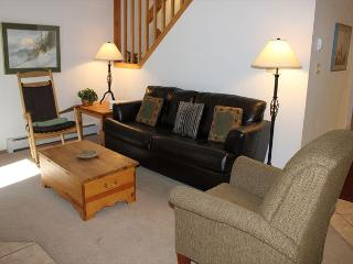CC206 Amazing Condo w/ Wifi, Fireplace, Clubhouse, 2 Blocks Off Main St.