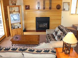 TR429 Nice Condo w/Wifi, Clubhouse, Mountain Views, Fireplace, Silverthorne