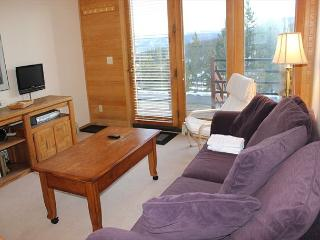 TR5024B Super Condo w/Wifi, Clubhouse, Mountain Views, Fireplace, Silverthorne