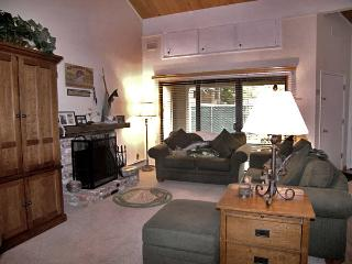 Nice Condo in Incline Village (67FP)