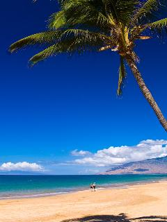 Kamaole 'Kam' One Beach (a.k.a Charley Young Beach) Kihei