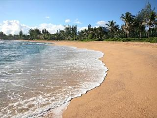 Beaufiul Haena Home!! Short walk to Tunnels beach,a favorite vacation rental!