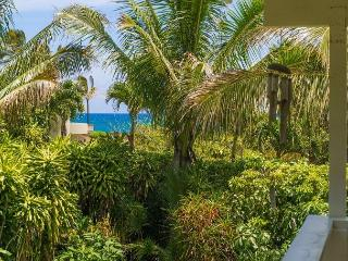 10% off Nov - Dec 16!! Beautiful Haena Home!! Short walk to Tunnels beach