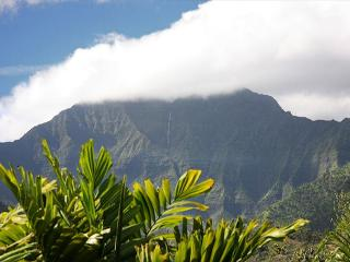Hanalei Waterfalls, Amazing Mountain Views, with A/C!  15% off Jan-Feb Dates!