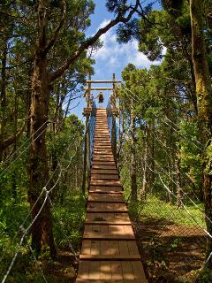 Kapalua Area Zipline! Kapalua Adventures Mountain Outpost Zip Line Tours