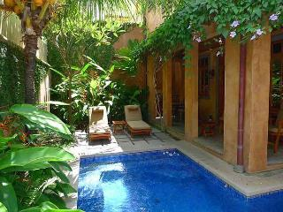 Lavish 3BR vacation villa-ocean view, balcony, gas grill, private pool CV1