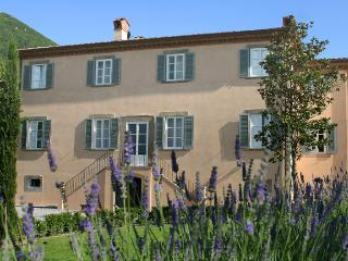 Luxury Tuscany Villa Near Lucca and Walking Distance to a Small Village - Villa