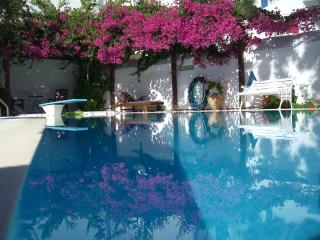 Paros Villa Rental in the Picturesque Village of Naoussa  - Villa Naoussa