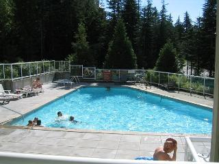Private end unit with a deck, big hot tub in lodge,free parking/internet., Whistler