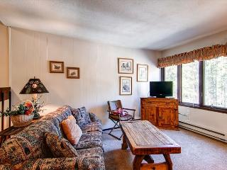 Asgard Haus Living Room Breckenridge Lodging Vacation Rentals