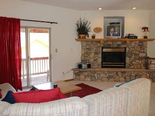 Amazing Townhouse with Fireplace, Common Hot Tub, and private Garage, Dillon