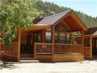 "Cozy ""Modular"" Style 1 BR with Sleeping Loft Cabin at Three Rivers Resort in Almont (#41)"