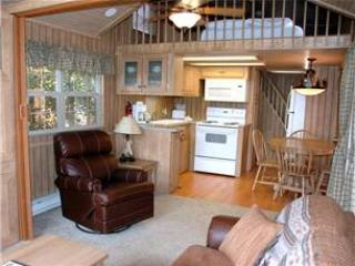 Modern 1 BR with Sleeping Loft Cabin on the Taylor River at Three Rivers Resort in Almont (#65)