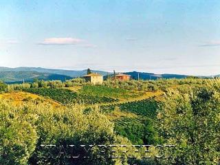 Perfect Tuscany Chianti Vineyard Villa-Great Views, San Casciano in Val di Pesa