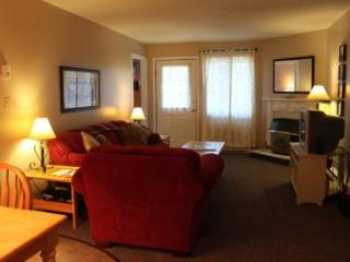 1BR condo with work station, free Wi-Fi - C2 236C