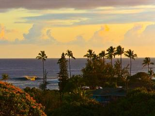 Poipu BEACH steps from your door!!  Sleep 7+ BEST DEAL in POIPU ** WOW CALL!