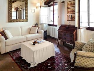 Perfect-Charming-Good Value & Great Oltrarno Location-A/C-Sunny Olivia Apartment, Florencia