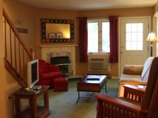 2BR multi-level condo with fireplace - 3C 335C, Lincoln