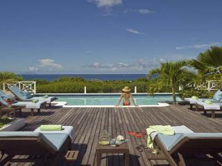 Hillside villa with guest house and a large poolside terrace. C JET, Terres Basses